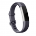 ALTA HR LARGE BLUE GRAY BAND FB163ABGYL